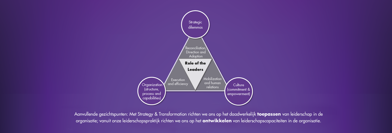 Strategy & Transformation model 2020